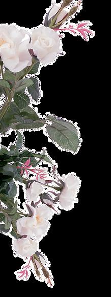 FLOWER-1-trans.png