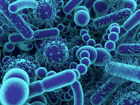 Bacteria & Viruses: Are They Always Bad?