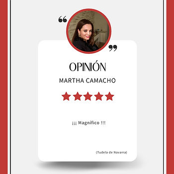 OPINION workshop 220521.png
