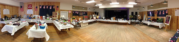 pano pic auction items.JPG