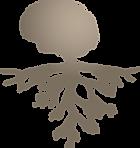 icon_wairua_fundamental_bronze1.png