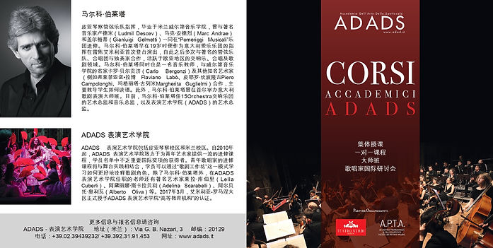 pieghevole ADADS cinese_page-0001.jpg