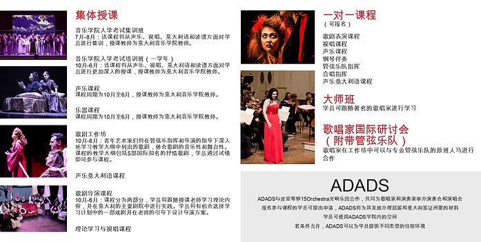 pieghevole ADADS cinese_page-0002.jpg