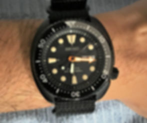 Seiko Black Turtle 3.jpg