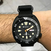 Seiko Black Turtle.jpg