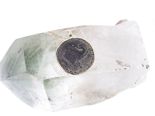 Ancient India elephant coin