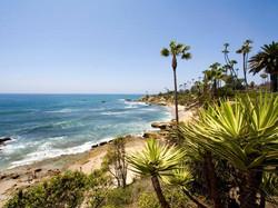 Laquna beach