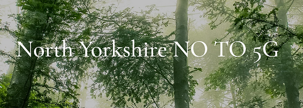 No to 5G North Yorks 2.png