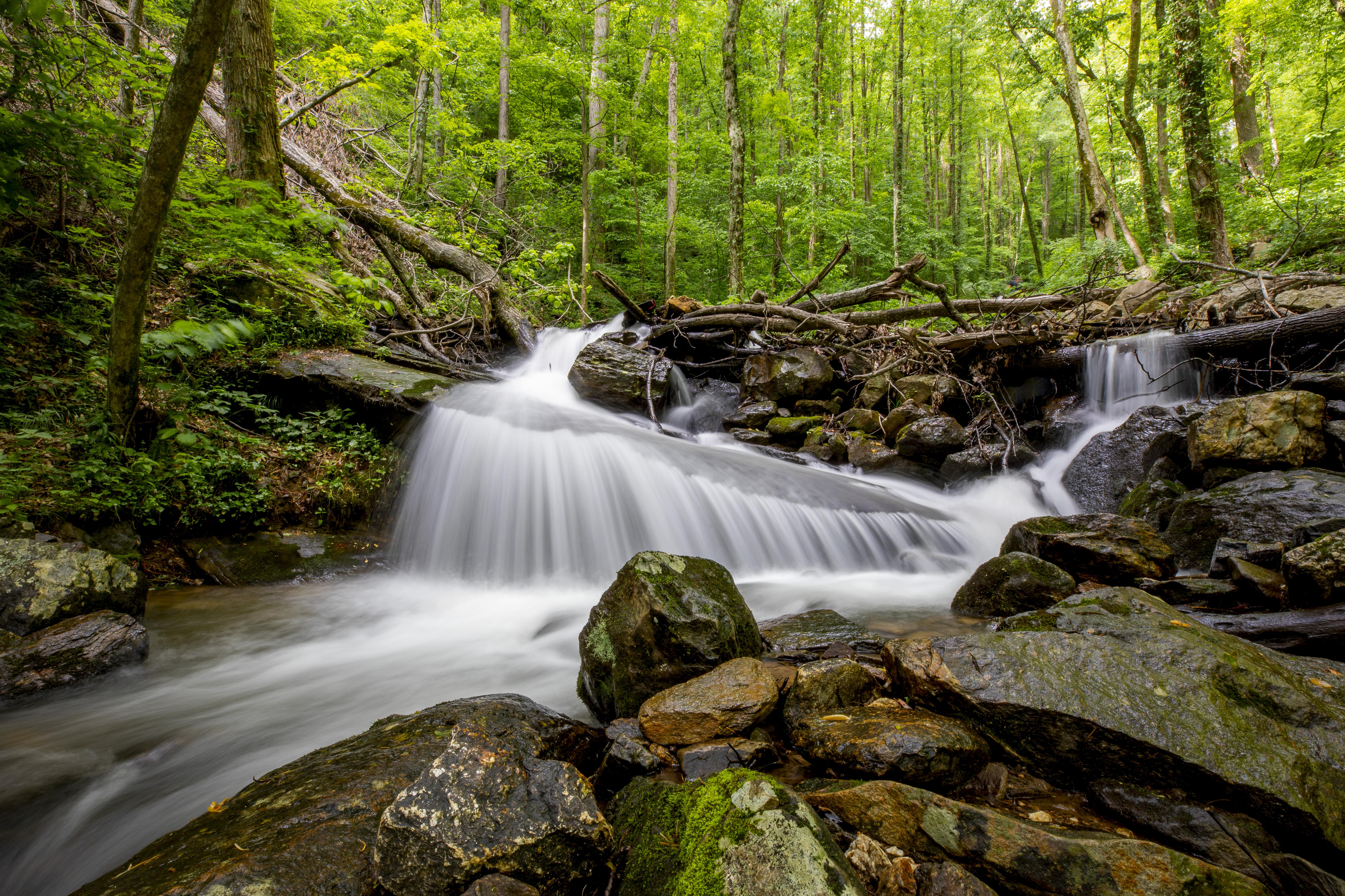 Amicalola Falls - GA