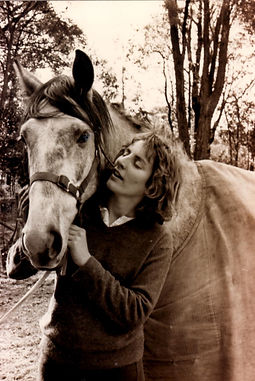 Yarra Valley Horse