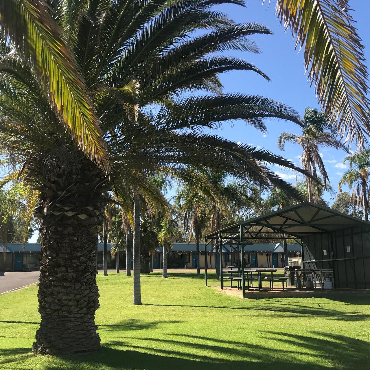 Palms at the Palms Resort