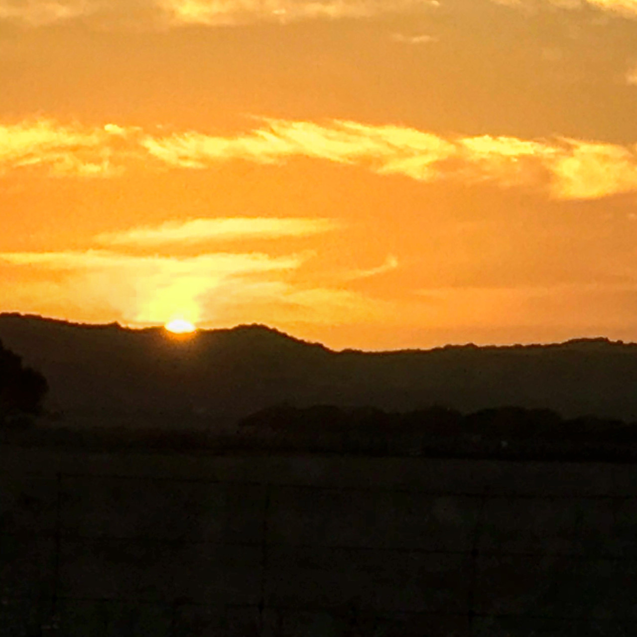 Typical outback sunset