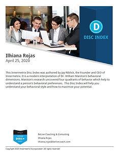 DISC Report.JPG