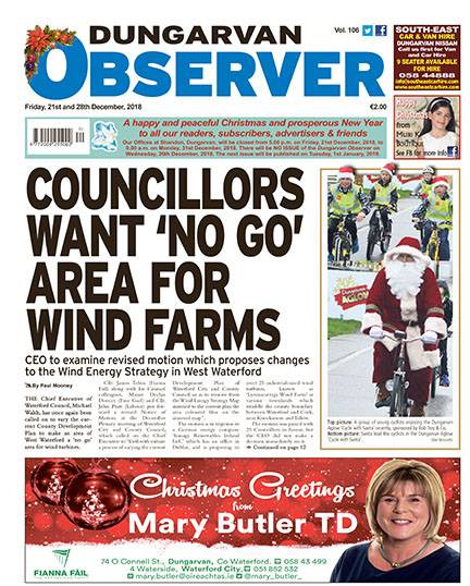 wind energy wind turbines innogy renewables ireland wind farm councilors opposed to development
