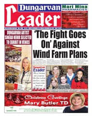 wind farms innogy renewables Ireland council votes against proposed wind turbines