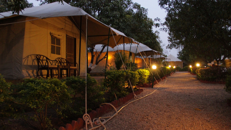 Where we stayed in Gir Forest camp