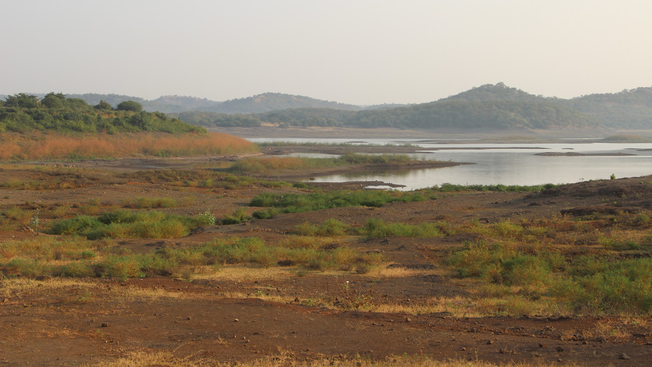 A lake inside the Gir forest area