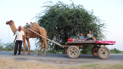 Riding a camel cart was quite an experience