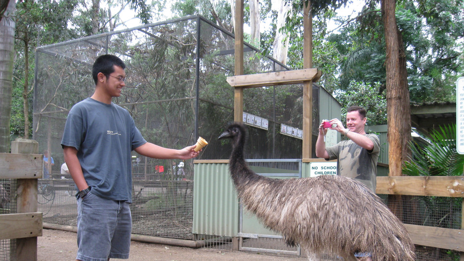 Human and Emu bonding in a nature park