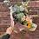 Thumbnail: Florists 'pic n mix'
