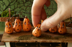 Enchanted gourds