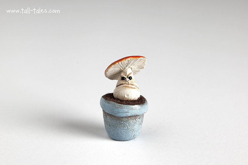Potted Face Toadstool - F