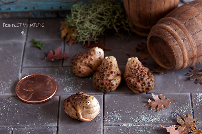 Warty Toad - Brown