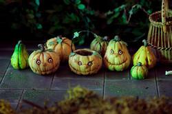 Warty pumpkins and squash