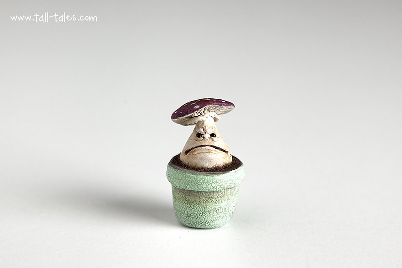 Potted Face Toadstool - C