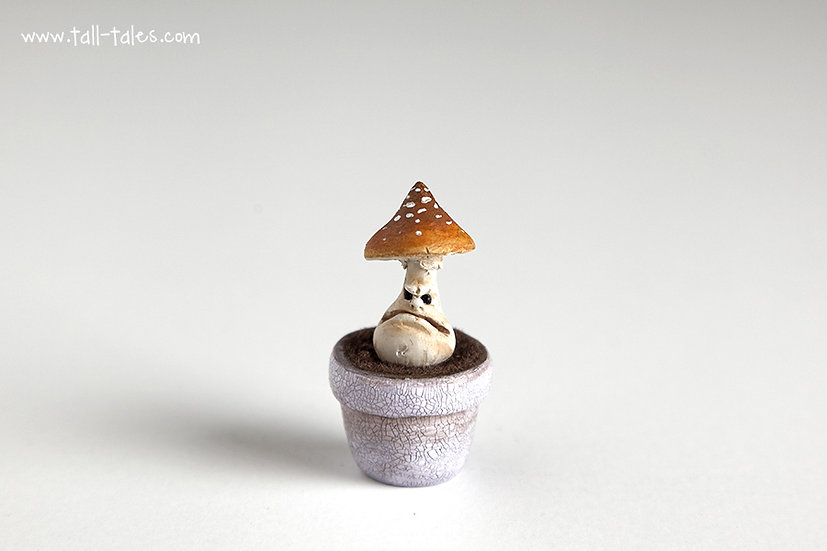 Potted Face Toadstool - B