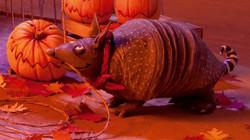 Marla Mudslide's armadillo - Buck