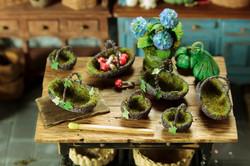 Fairy baskets