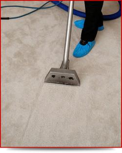 carpet clean 2