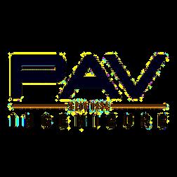 PAV Ingenieure Ingenieurgesellschaft mbH