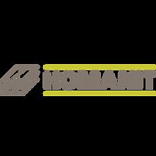 Homanit Logo.png