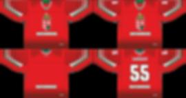 MOPSZ 2019 piros latvany alul raszter.pn