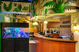 Agave Pediatrics Phoenix Location Lobby with jungle decor and fishtank