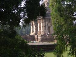 Temple et lianes