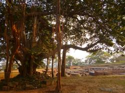 Vestiges bouddhistes de Lalitgiri