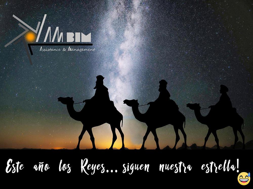 Reyes magos AMBIM