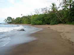 Danta Beach