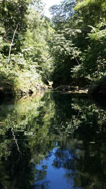 Rio Claro River
