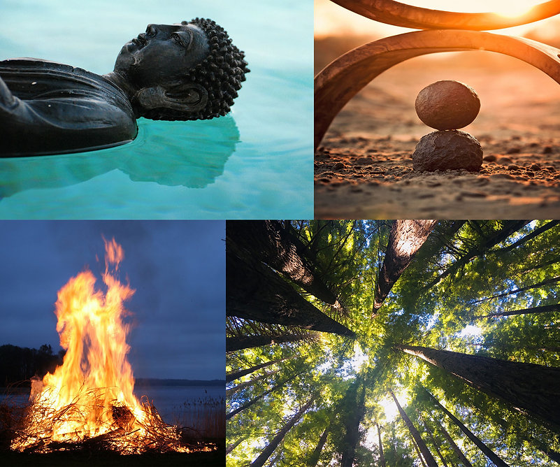 fe Collage 4 Elemente_bearbeitet-1.jpg