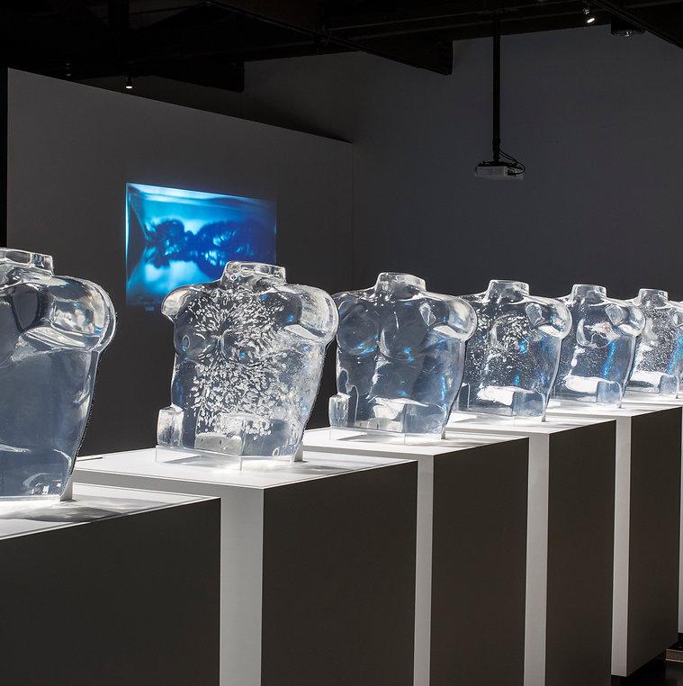 Nicholas Galanin, Erin Joyce, Contemporary Art, Heard Museum, Phoenix, Art Curator