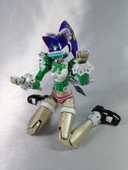 2012.8月16日完成 Fey-Yen Assigned Unofficial Model...jpg