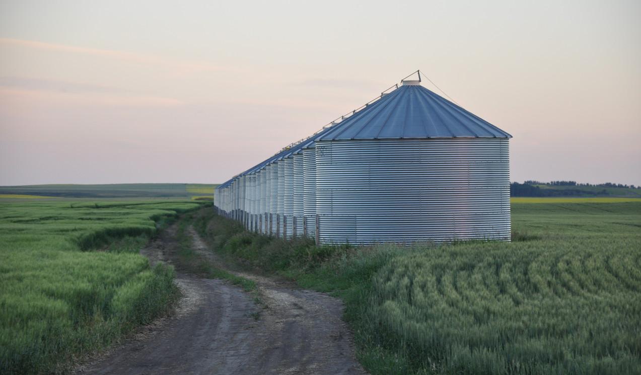 Grain Bins (3).JPG