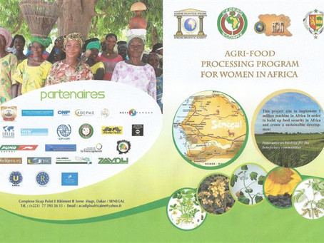 "PROJECT PROMOTED BY U.C.E.E. "" AGRI-FOOD PROCESSING PROGRAM FOR WOMEN IN AFRICA """