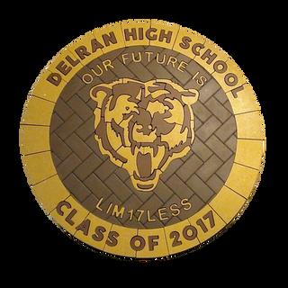Delran High School Paver Logo 2017