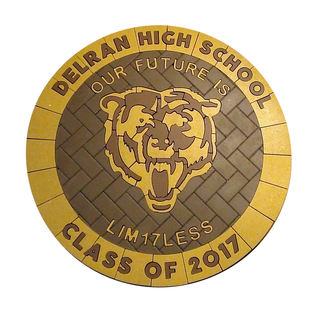 Delran High School Paver Logo 2017