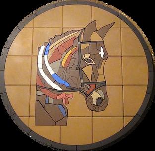Cutom Horse